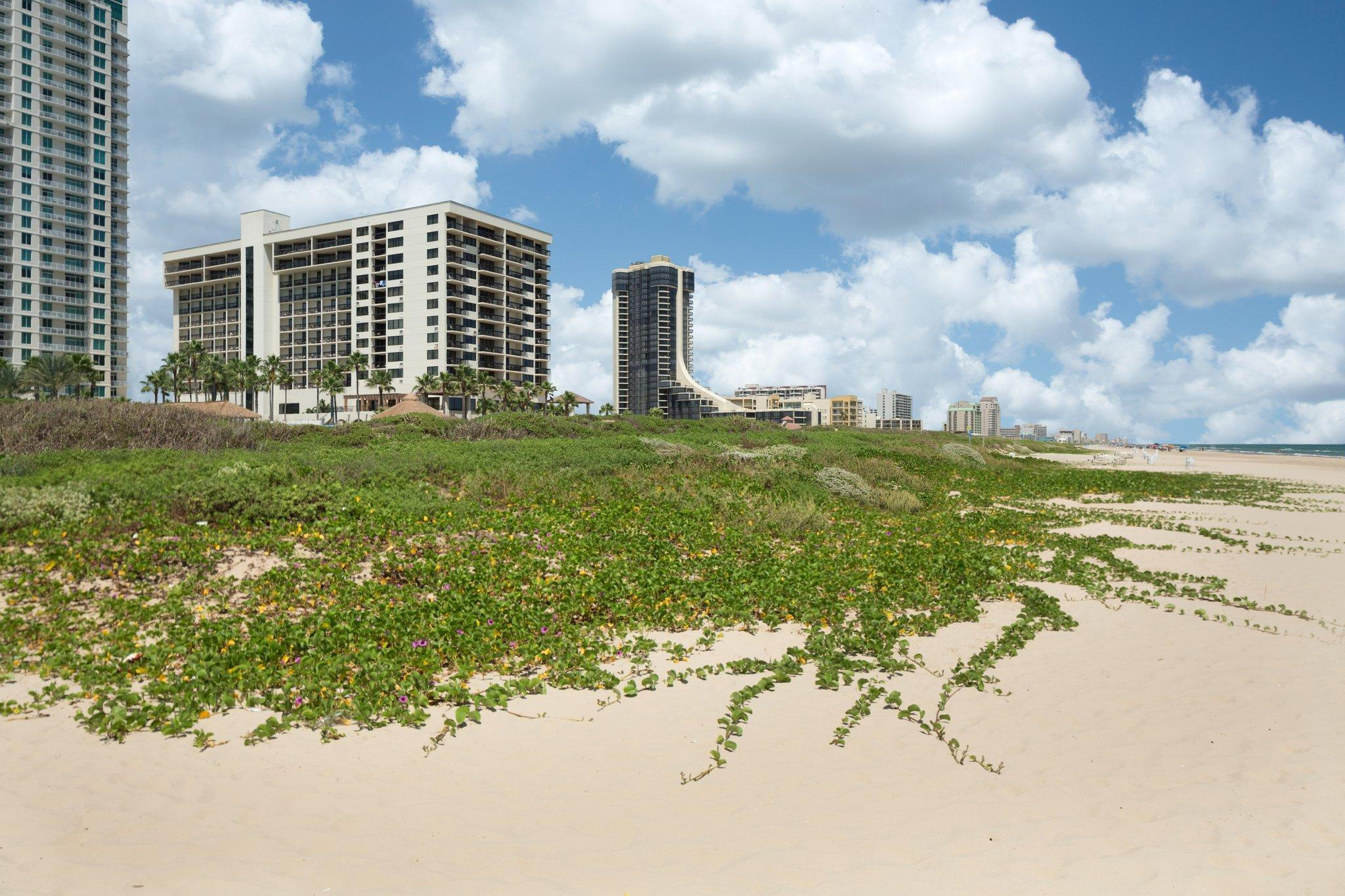 The Pearl South Padre