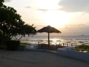 Talima Beach Villas & Dive Resort Mactan Island - Manzara
