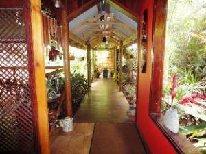 ダインツリー レインフォレスト リトリート (Daintree Rainforest Retreat)
