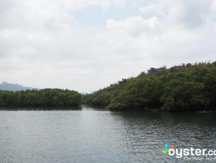 Discovery Island Resort and Dive Center Coron - Mangrove area around the island