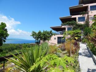 Bohol Vantage Resort Panglao Island - حديقة