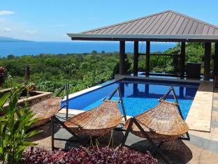 Bohol Vantage Resort Panglao Island - حمام السباحة