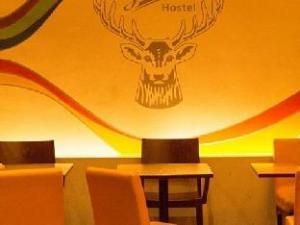Información sobre Jaeger's Hotel & Hostel (Jaeger's Hotel & Hostel)