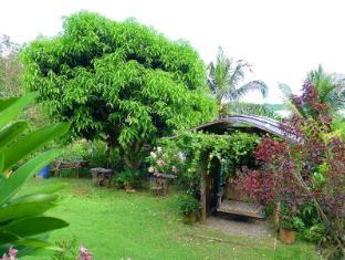 Mountain's Bay Guest House and Spa Puerto Princesa City - Garden