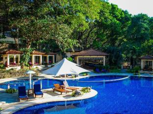 Club Punta Fuego Batangas - Swimming Pool