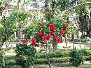 Rhino Lodge & Hotel Chitwan - Grădină