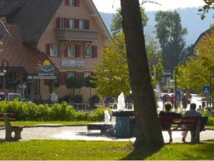 Hotel Sonneneck Titisee   Adults Only