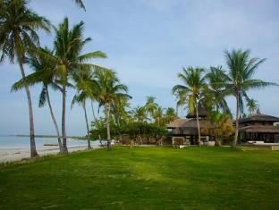 Ananyana Beach Resort Panglao Island - Vườn
