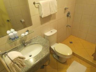 체리 블러섬 호텔 마닐라 마닐라 - 화장실