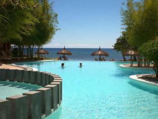Bluewater Panglao Beach Resort Panglao Island - حمام السباحة