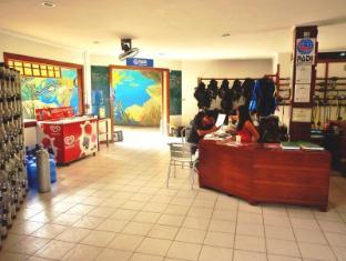 Quo Vadis Dive Resort Moalboal - Faciliteter