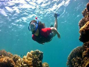 Ravenala Resort Moalboal - Recreational Activity - Snorkeling
