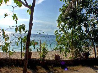 Ravenala Resort Moalboal - Seaview Room View