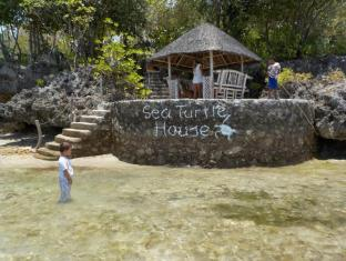 Sea Turtle House Moalboal - vhod