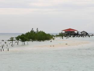 Hotel Precious Garden of Samal Davao City - समुद्र तट