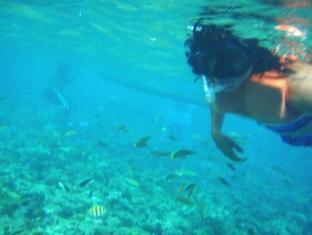 White Beach Bungalows Bantayan Island - Coral Garden