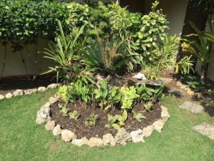 奇塞纳苏度假村 邦劳岛 - 花园