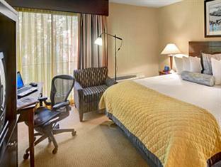 Wyndham Garden Hotel- Newark Airport Newark (NJ) - King Room
