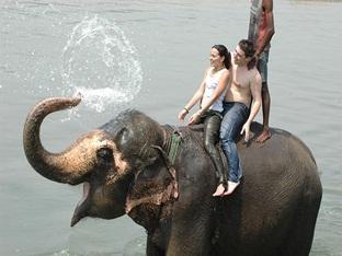 Hotel Wild Life Camp Chitwan - Lõõgastumisvõimalused