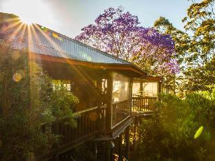 Фото отеля Tamborine Mountain Bed & Breakfast