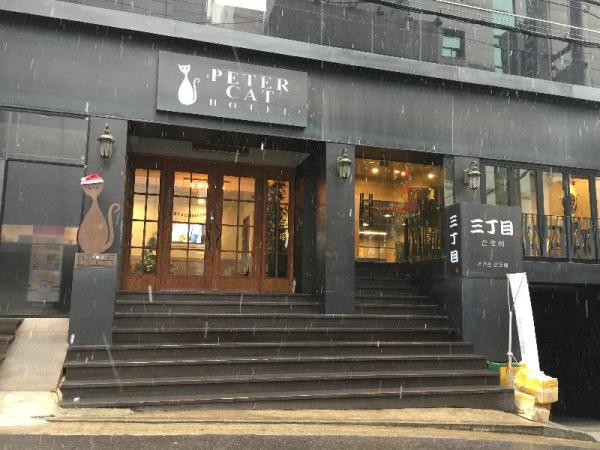 Petercat Hotel Sinchon (Hongdae) Seoul