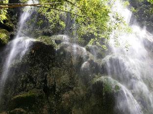 picture 3 of Eden Resort