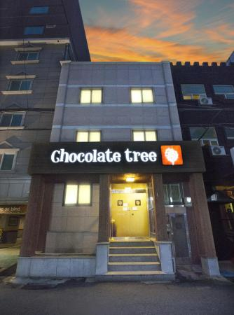 Chocolate Tree Hostel Seoul