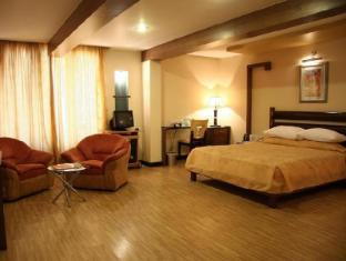 Deccan Plaza Chennai - Guest Room