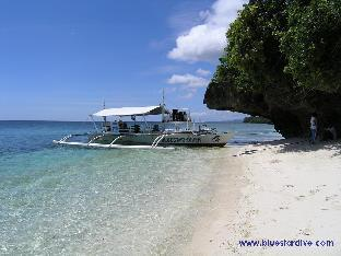 picture 4 of Blue Star Dive Resort