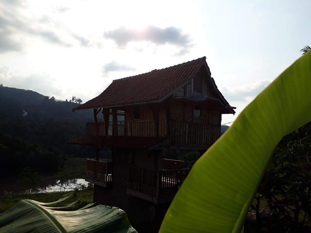 Villa Sawah And Valley Untuk 4 Orang