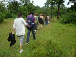 Hotel Rainforest Chitwan - Esportes e Atividades
