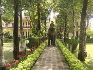 Hotel Rainforest Chitwan