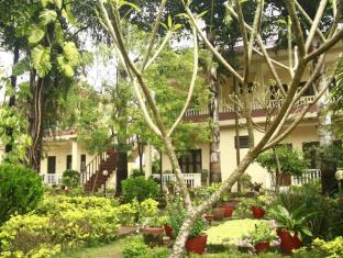 Hotel Rainforest Chitwan - Varanda/Terraço
