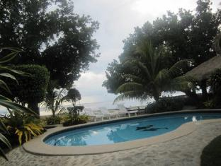Bitaug Beach Resort Panglao Island - בריכת שחיה