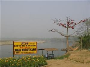 丛林野生动物营酒店 (Jungle Wildlife Camp)
