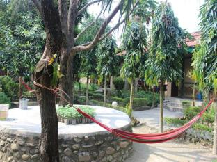 Eden Jungle Resort Chitwan - Garden
