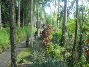 Villa Prana Shanti Bali - Garden