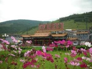 Wutaishan Wufeng Hotel