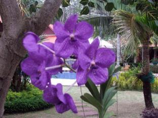 Baan Sai Yuan Phuket - Garten