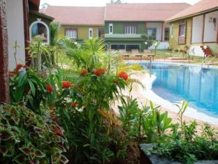 Ginger Tree Boutique Resort North Goa - Swimming Pool