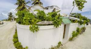 Thông tin về Faza view Inn (Faza view Inn at Maafushi)