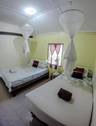 アダンシーエコロッジ Adang Sea Eco-Lodge