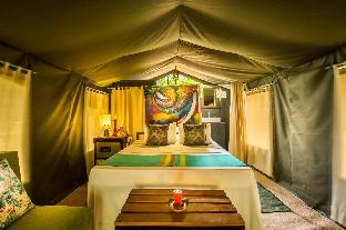 Фото отеля Mahoora Tented Safari Camp - Wilpattu