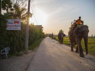 Chitwan Adventure Resort Chitwan (distrikt)  - Inne i hotellet