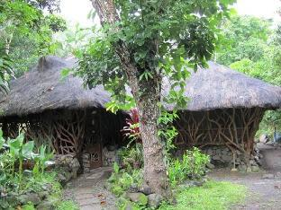 picture 1 of Nature Villa Bed and Breakfast