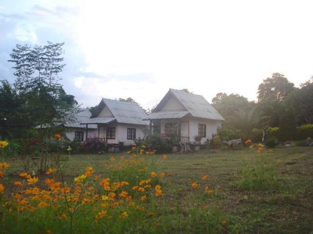 ภูข้าวปาย – Phukaopai