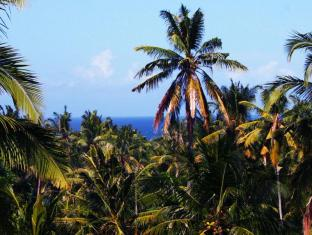 Atmadeva Villa Bali - View