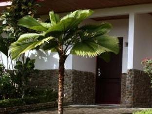 /volcano-lodge-springs/hotel/la-fortuna-cr.html?asq=jGXBHFvRg5Z51Emf%2fbXG4w%3d%3d