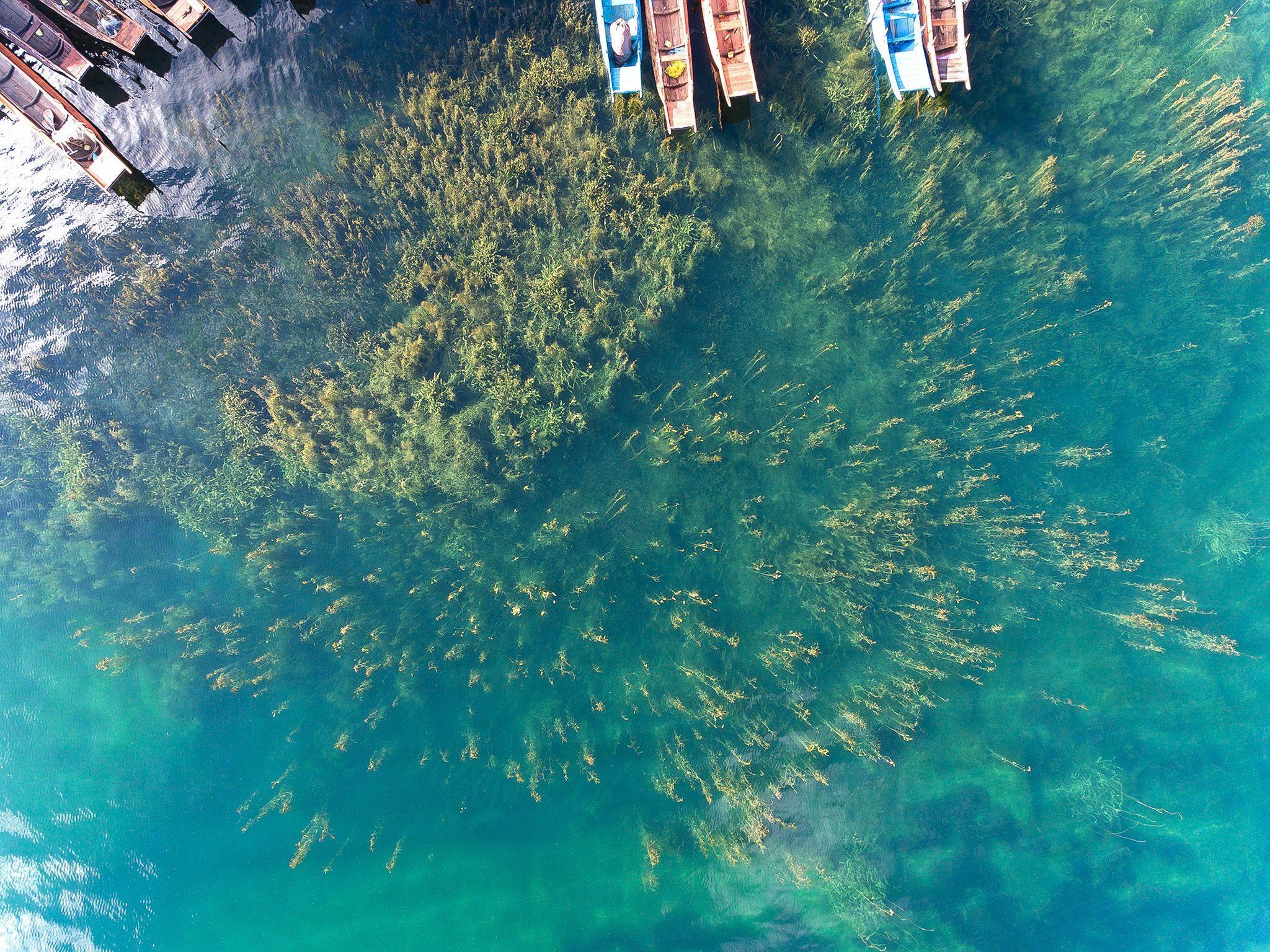 Bamboo Cultural Lake Inn
