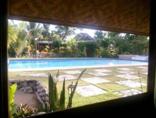 Panglao Kalikasan Dive Resort Panglao Island - Yüzme havuzu